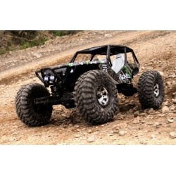 Axial Wraith 1/10th Scale Electric 4WD - RTR