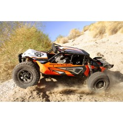 Axial EXO - 1/10th Scale Electric 4WD Terra Buggy - Kit