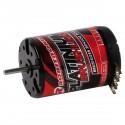 Robitronic Platinium Brushless Motor 13.5T